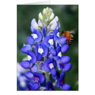 Bee & Bluebonnet Card