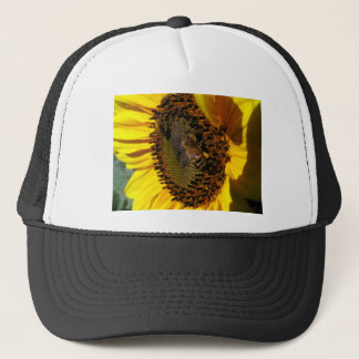 Bee Buffet Trucker Hat