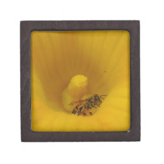 Bee Covered in Pollen Premium Keepsake Box