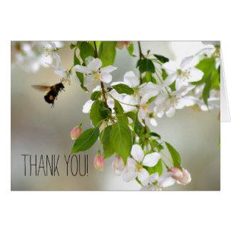 Bee Crabapple Blossom Flower Floral Thank You Note Card