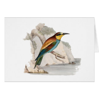 Bee Eater Card
