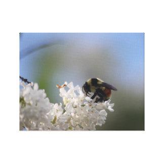 BEE HAPPY CANVAS PRINT