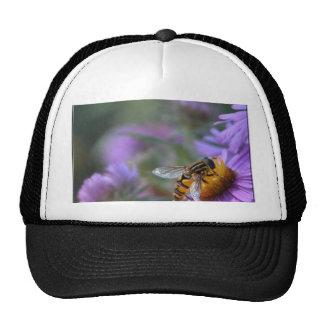Bee happy hat