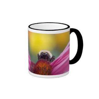 bee head mug