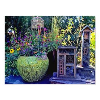 Bee Hive Garden Scene Photograph