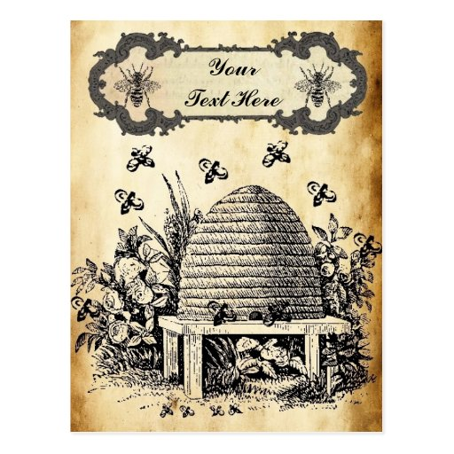 Bee Hive Vintage Personalized Postcard