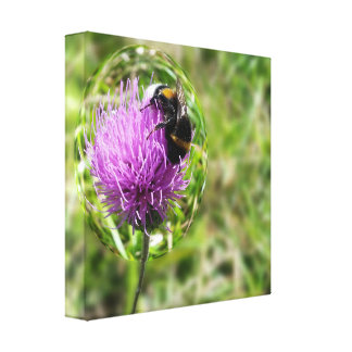 Bee in bubble canvas print