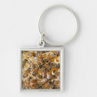 Bee keeping at Arlo's Honey Farm Silver-Colored Square Key Ring