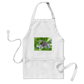 bee,on a batchelor button apron