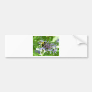 bee,on a batchelor button bumper stickers