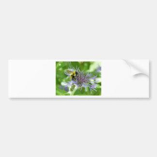 bee,on a batchelor button car bumper sticker