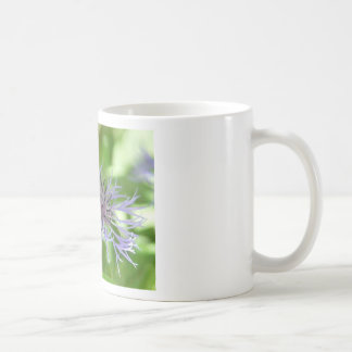 bee on a batchelor button coffee mugs