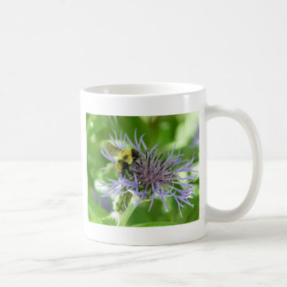 bee,on a batchelor button coffee mugs