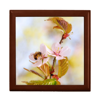 Bee On A Cherry Flower Large Square Gift Box