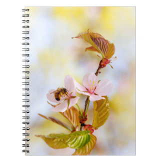 Bee On A Cherry Flower Notebooks