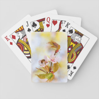 Bee On A Cherry Flower Playing Cards