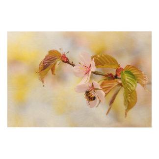 Bee On A Cherry Flower Wood Wall Art