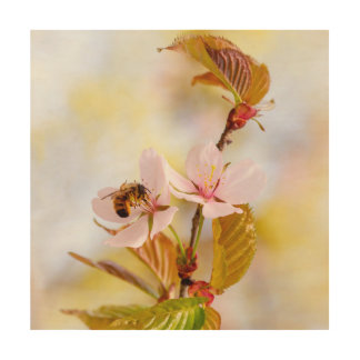 Bee On A Cherry Flower Wood Wall Decor