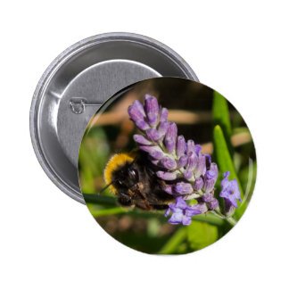 Bee on a Flower 6 Cm Round Badge