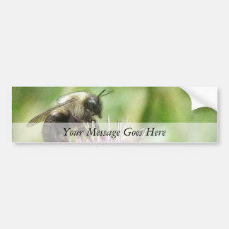 Bee On Bachelor Button Bumper Stickers