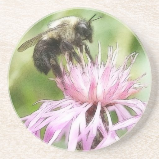 Bee On Bachelor Button Coasters