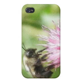 Bee On Bachelor Button iPhone 4 Cases
