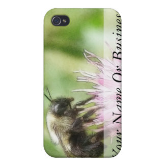 Bee On Bachelor Button iPhone 4/4S Cover