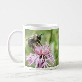Bee On Bachelor Button Mugs