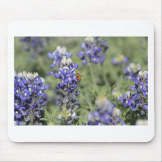Bee on Bluebonnet Mouse Pads
