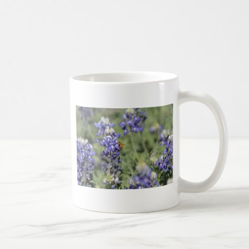 Bee on Bluebonnet Mugs