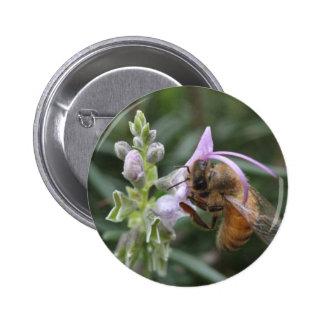 Bee on Flower 6 Cm Round Badge