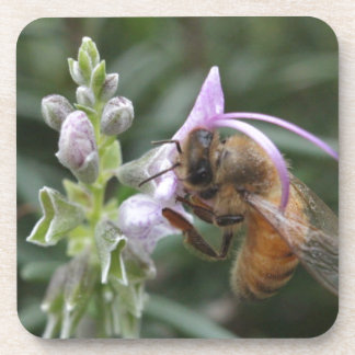 Bee on Flower Beverage Coaster