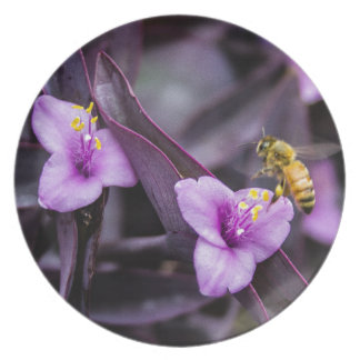 Bee on Flower Plate