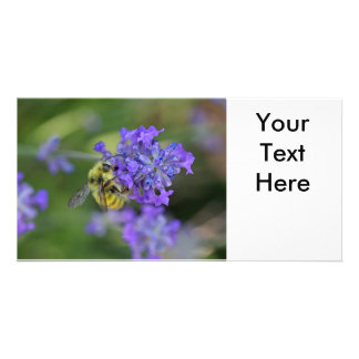 Bee on Lavender Photo Photo Card