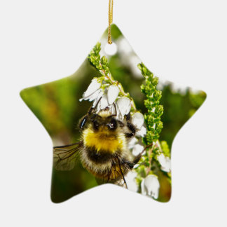 Bee on Lucky White Heather Ceramic Star Decoration