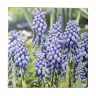 Bee On Muscari Flowers Small Square Tile