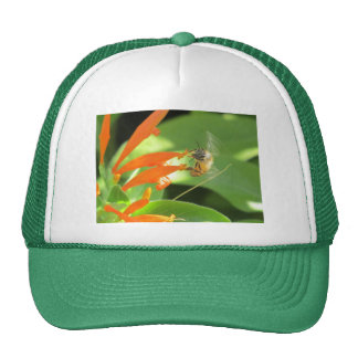 Bee on Orange Flower Trucker Hat