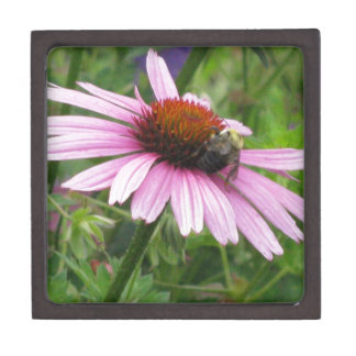 Bee on Pink Wildflower Premium Keepsake Box