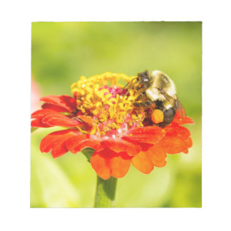 bee on red flower with pollen sacs notepad