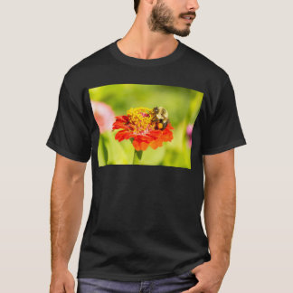 bee on red flower with pollen sacs T-Shirt