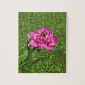 Bee on Rose Colored Flower Puzzle