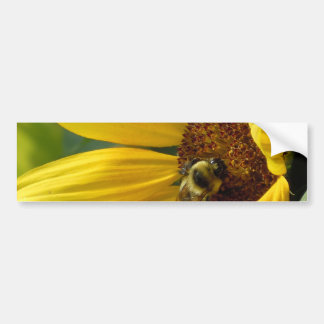 Bee on Sunflower Bumper Sticker