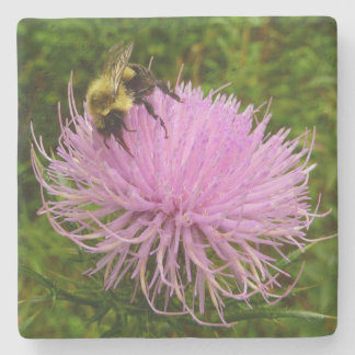 Bee on Thistle Flower Stone Coaster