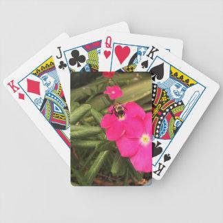 bee poker deck