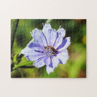 Bee With Pollen on Chicory Flower Puzzle