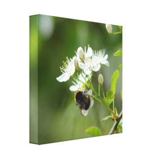 Bee X Flower Canvas Print