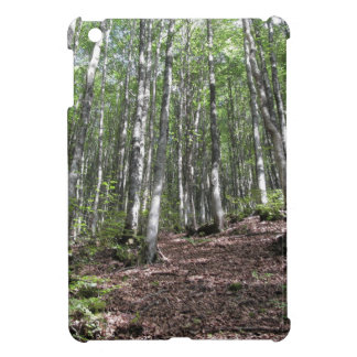 Beech forest landscape in summer . Tuscany, Italy Case For The iPad Mini