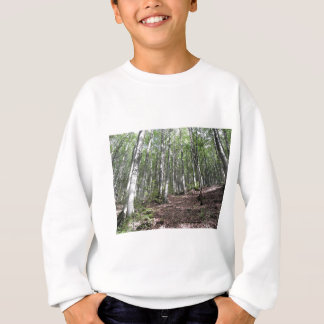 Beech forest landscape in summer . Tuscany, Italy Sweatshirt