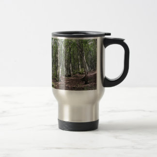 Beech forest landscape in summer . Tuscany, Italy Travel Mug