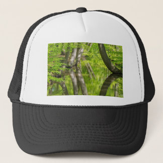 Beech tree trunks with water in spring forest trucker hat
